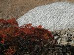 残雪と紅葉