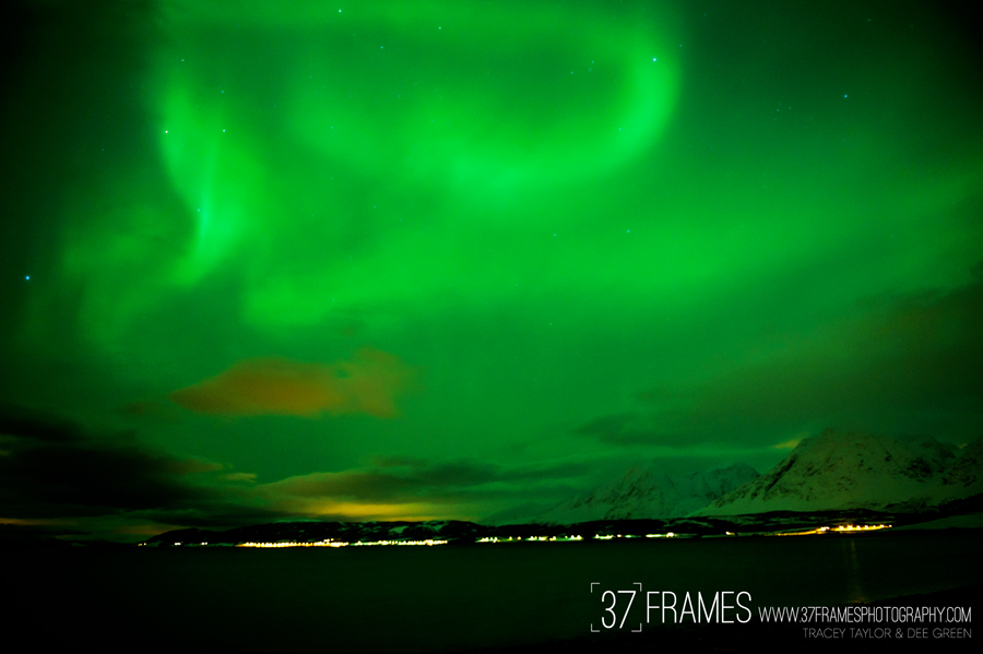 37 Frames Northern Lights Workshop. Tromso, Norway.
