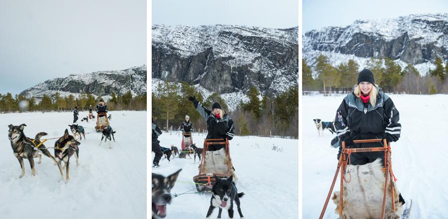 37 frames dogsledding 8