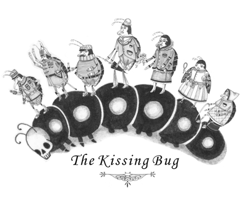 kissingbug2