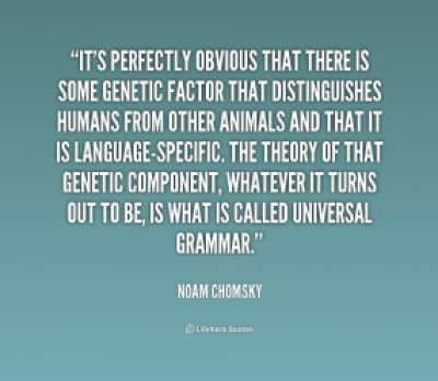 900296667-quote-noam-chomsky-its-perfectly-obvious-that-there-is-some-243715_1