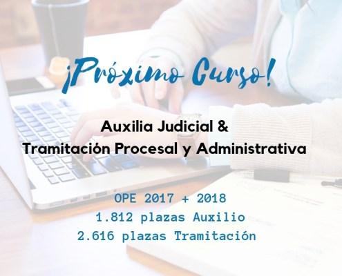curso auxilio judicial y tramitacion procesal