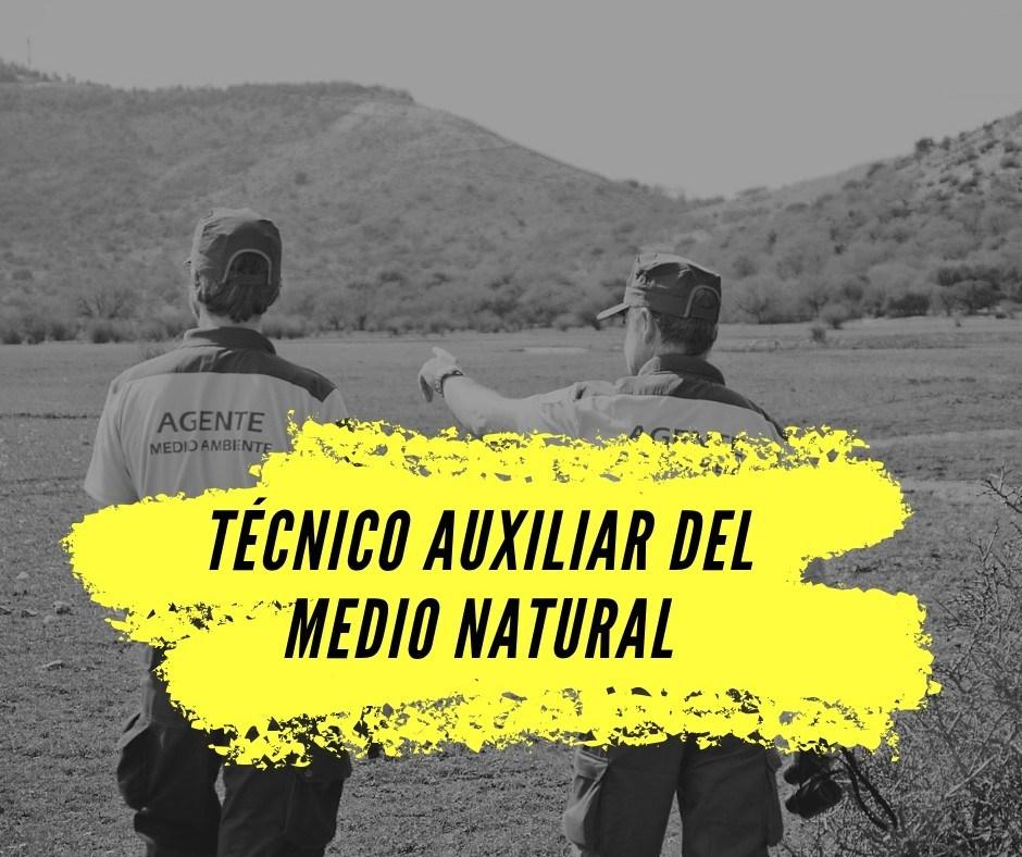 Preparacion-Oposiciones-Guarda-Forestal-de-Cantabria Correccion convocatoria auxiliar medio natural Cantabria 2020