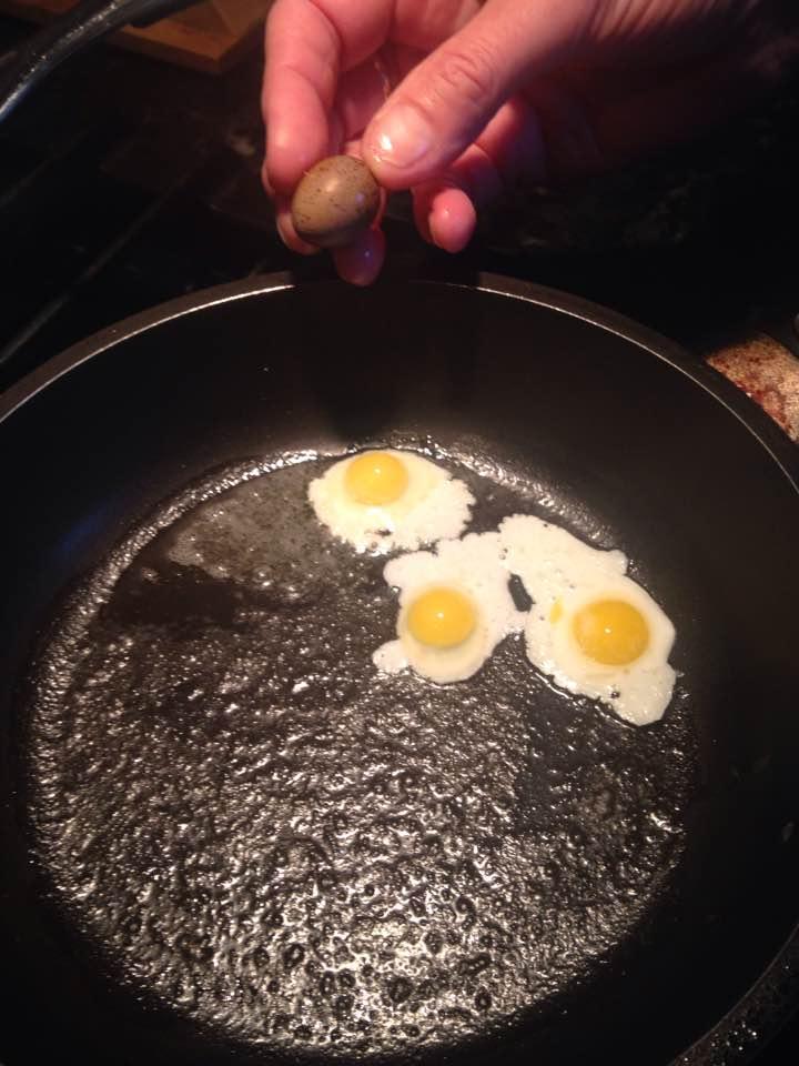 Egg Buttons Chick Hen