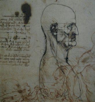 Leonardo-da-Vinci-portrait-face-study