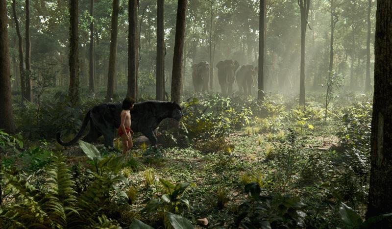 Disneys-Das-Dschungelbuch-3D-2016-filmszene