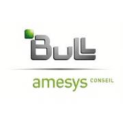 bull-amesys