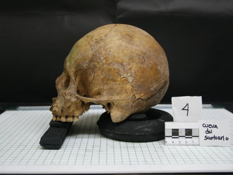 Archeologia & Forense