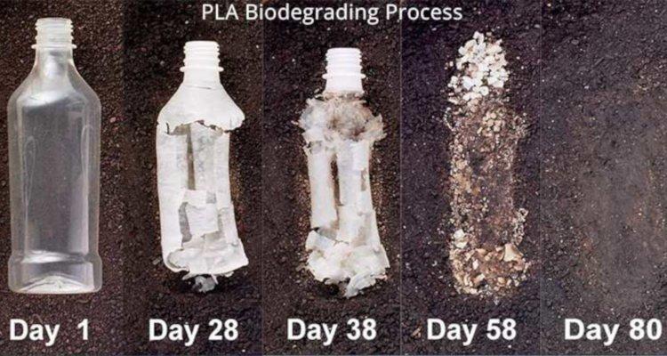 pla vs abs environmental friendliness comparison