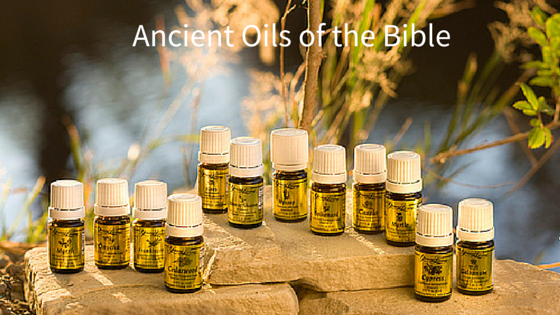 Ancient Oils Of The Bible Carol Rundle