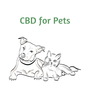 300 mg CBD Oil for Pets (Subscription)