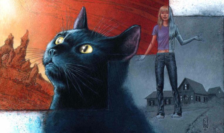 bluecat2