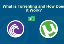 What is Torrenting and How Does it Work?
