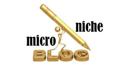 microniche blog