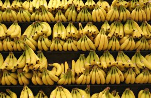 Shelves full of bananas