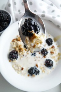 off the farm blackberry overnight oats