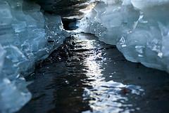 Artico, allarme erosione coste: perso mezzo metro all'anno!