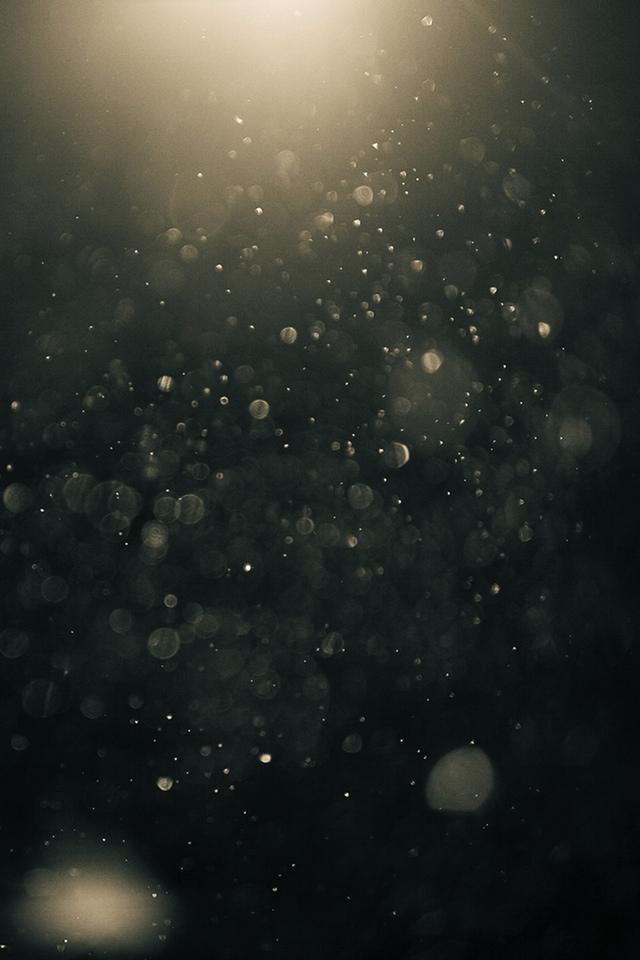 Gold Dust 3W Gold Dust