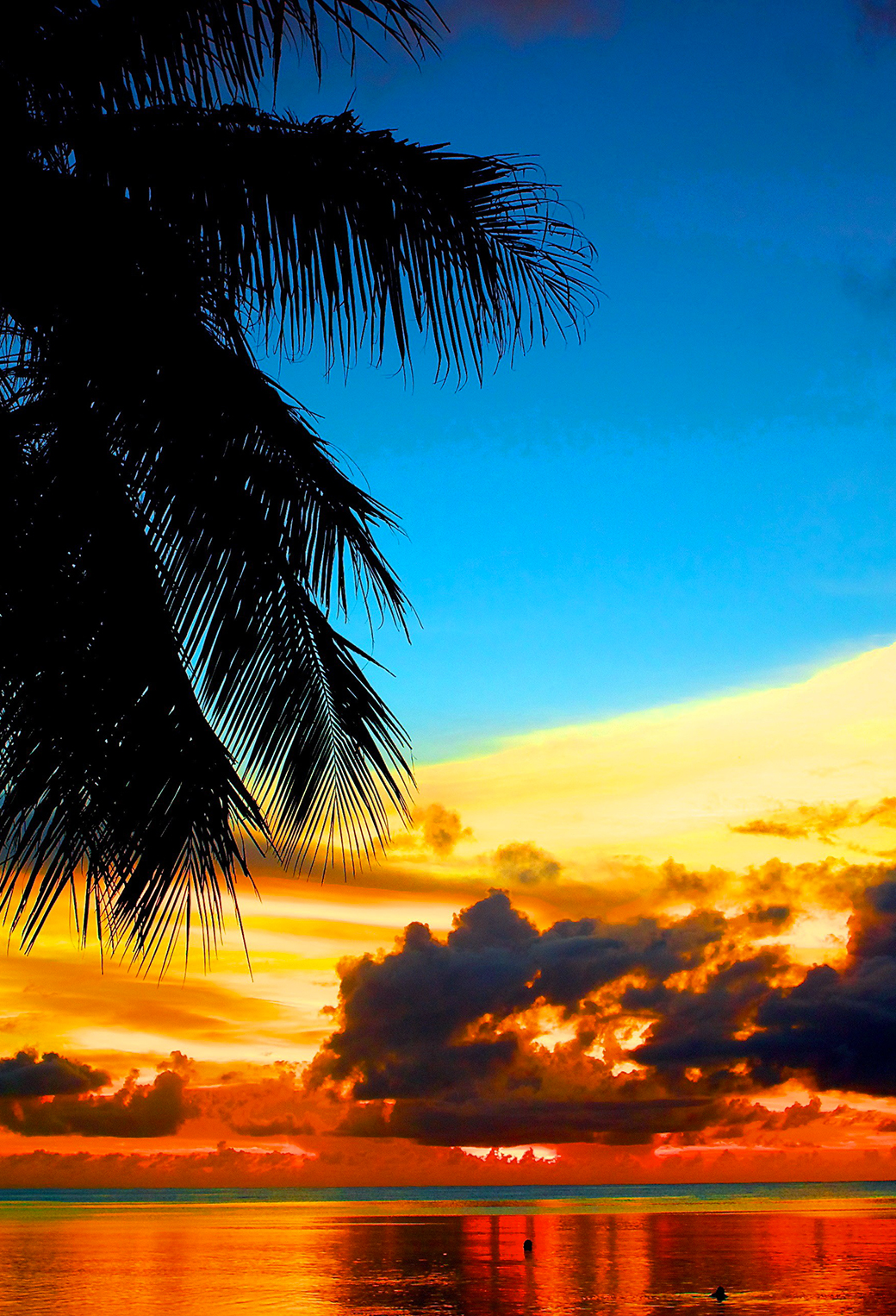 Lovely Tropical Sunset 3Wallpapers iPhone Parallax Lovely Tropical Sunset