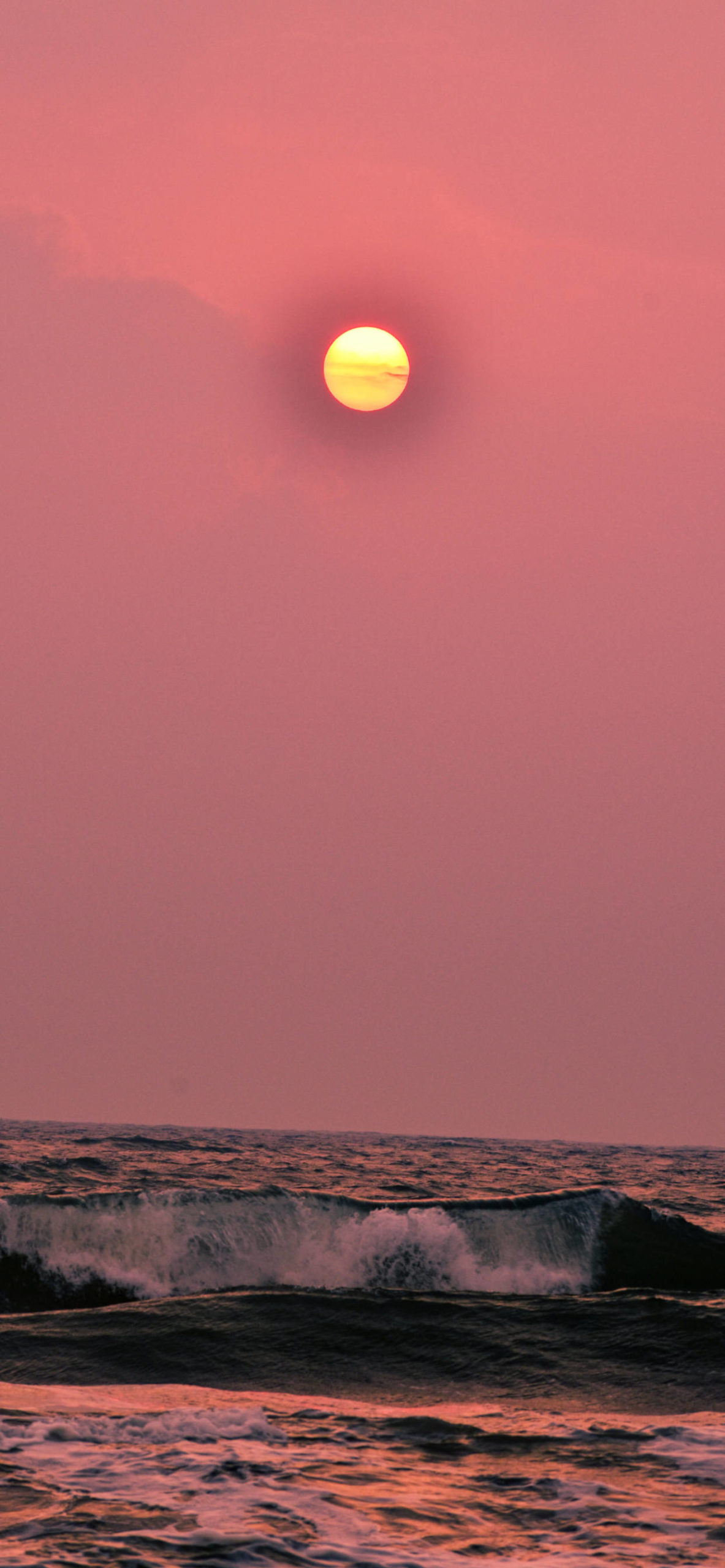 iPhone wallpapers colors pink sea scaled Rose