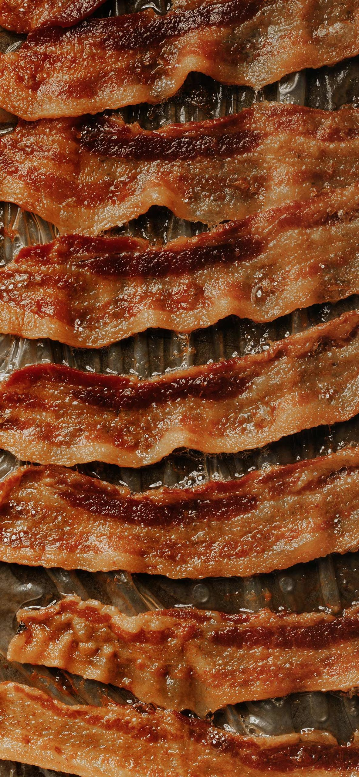 iphone wallpapers bacon2 scaled Bacon