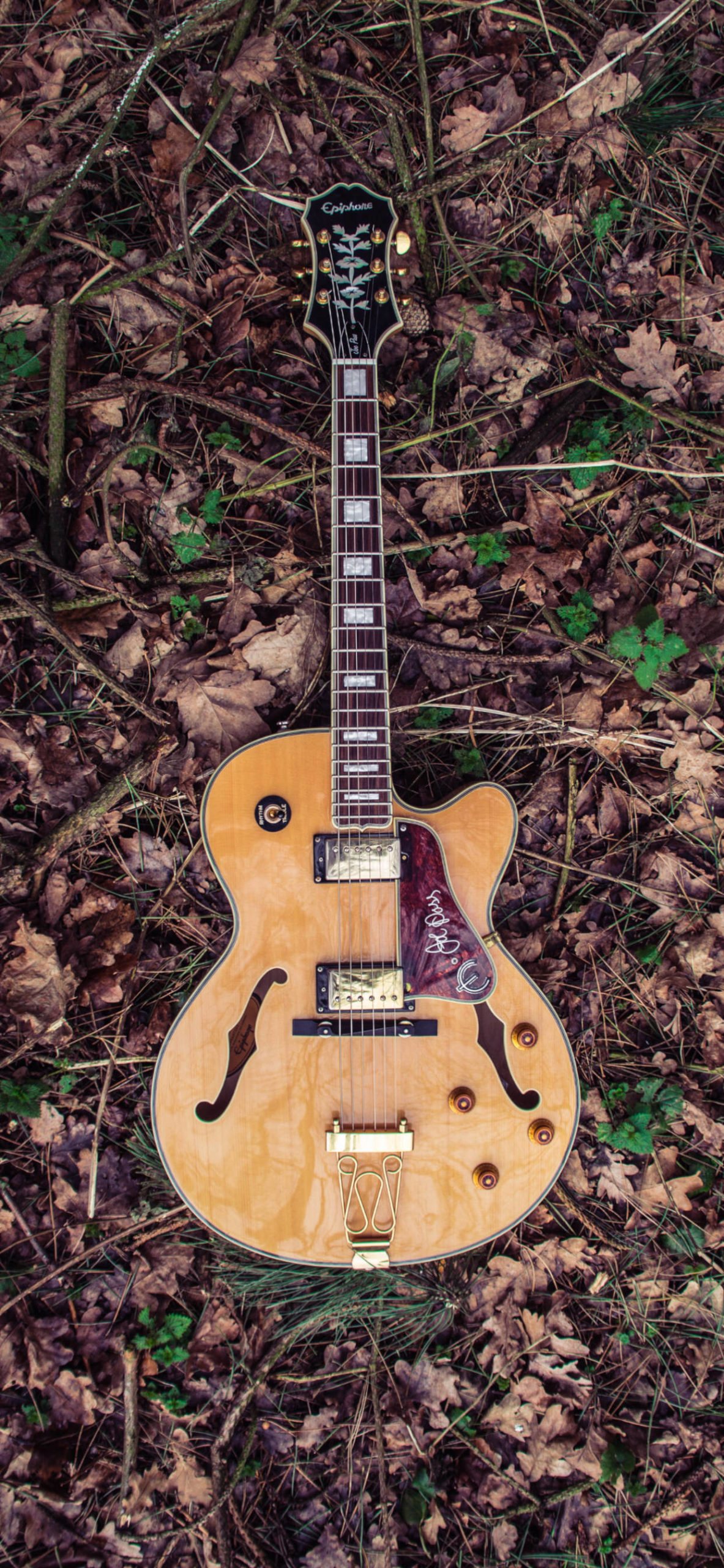 iPhone wallpapers guitar leafs scaled Guitar