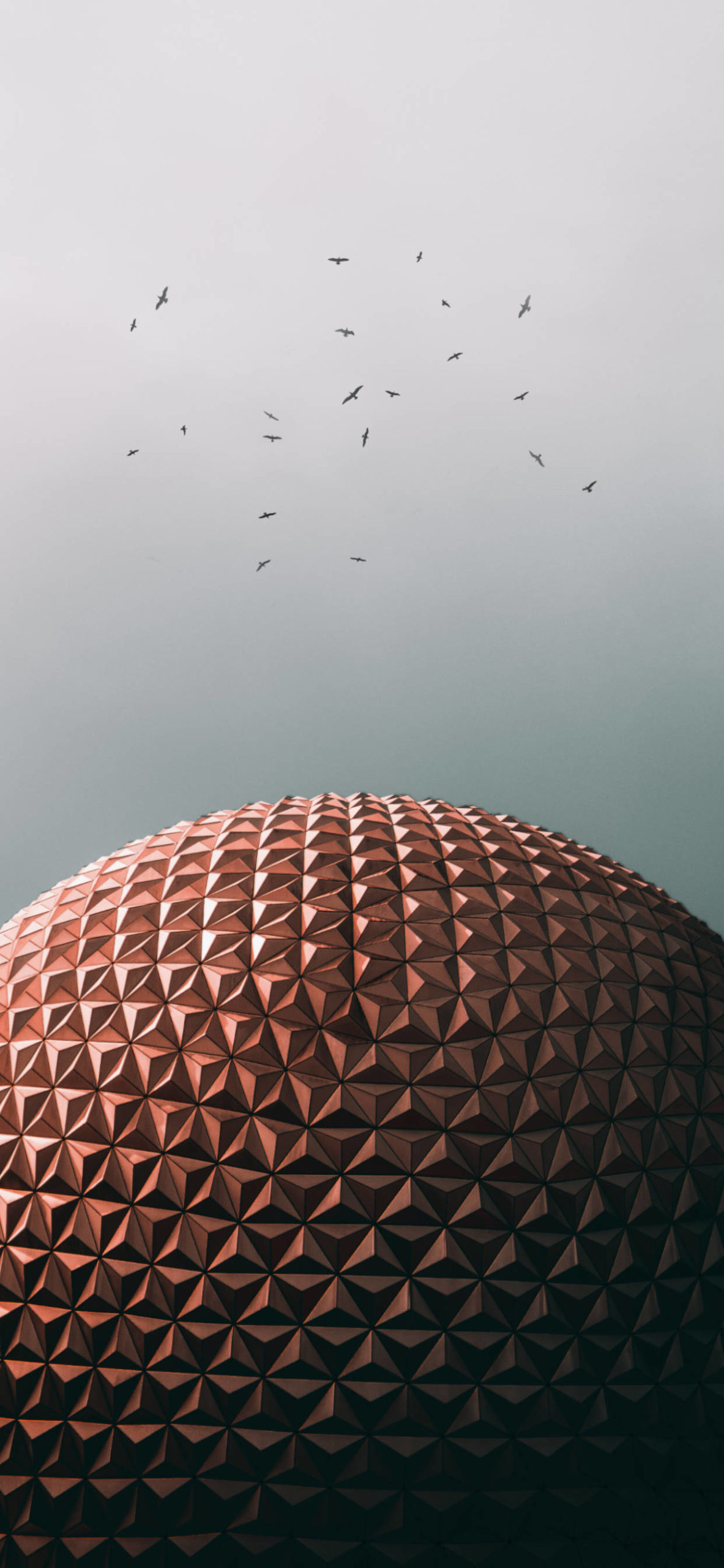iPhone wallpapers architecture disney world orlando scaled Architecture