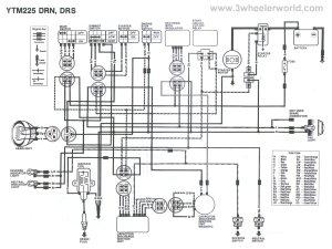 3 WHeeLeR WoRLD  Tech Help  Yamaha Wiring Diagrams