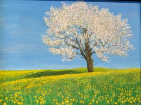 Blossom & Dandelions by John Dawson-£80