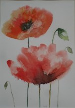 Large Poppies by Helen Norfolk, Watercolor on Paper, 20cm x 29cm