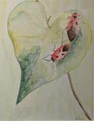 Love Bugs by Diane Chen-£75