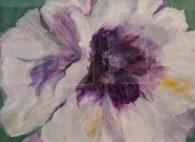 Peony by Janice Andrews-£65