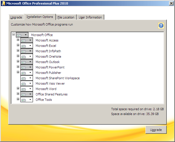 microsoft office professional plus 2010 installation options