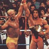 WrestleMania VI: Hogan vs. Warrior