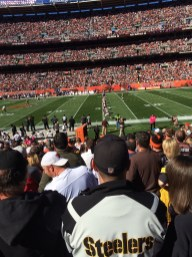 Week 6 2014 Browns Steelers (7)