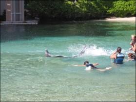 Hawaii Trip 2003 (53)