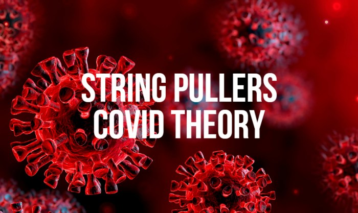 String Pullers Covid Theory