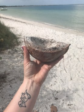 Coconut shell I found on the beach