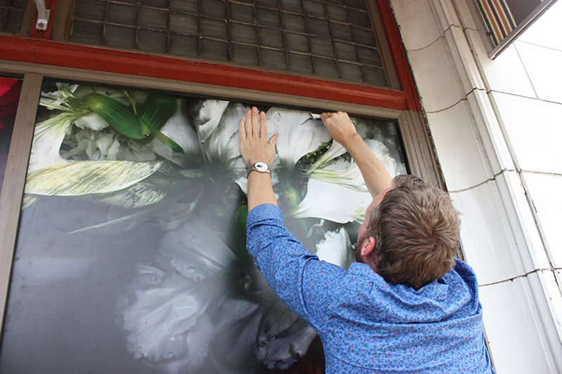 glass, windows, signage, vinyl, adhesive,