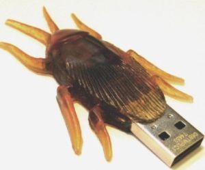 usb-kakkerlak