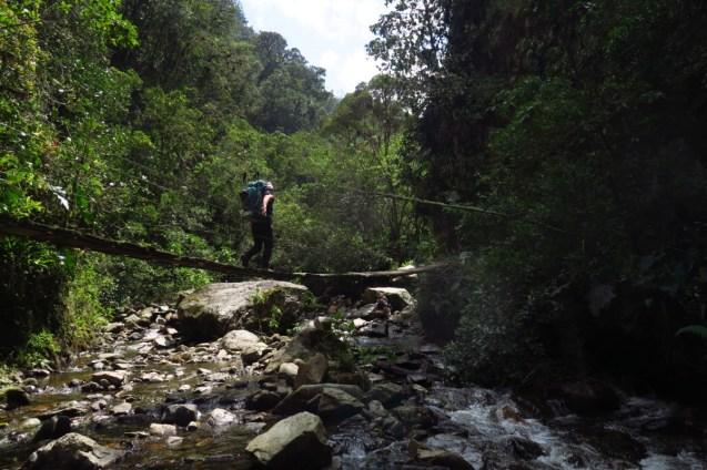 The Beginning of the hike involves numerous fun bridge crossings.