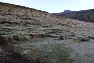 The stark and alien landscape of the páramo.