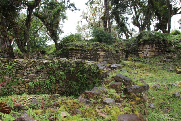Mosses compete with archaeologists for dominion over the ruins.