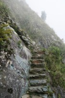 The trail climbing Mt. Machu Picchu.