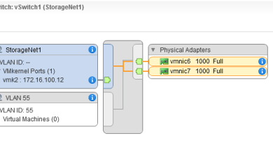 vSphere VLANs
