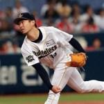東京六大学野球でもヤナセのバットが人気!