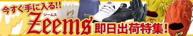 16-3-zee-soku