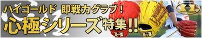14-5-higold-kokoro2