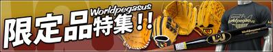 ワールドペガサス限定商品特集!!