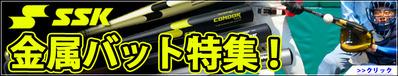 14-04-ssk-bat2